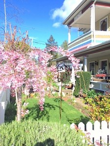 The alarm clock of Spring has sounded in Southern Oregon at The Painted Lady B & B
